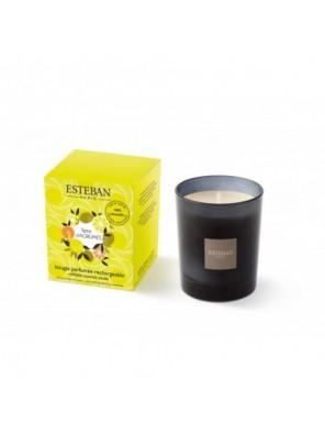 Bougie Parfumée Terre d'Agrumes Rechargeable 170 G