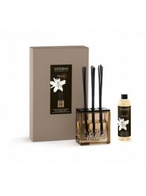 Bouquet Parfumé Triptyque Néroli Et Sa Recharge 250 Ml