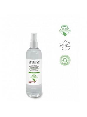 Solution hydro-alcoolique 250 ML